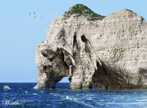 Unbelievable nature pictures  Daily Pictures