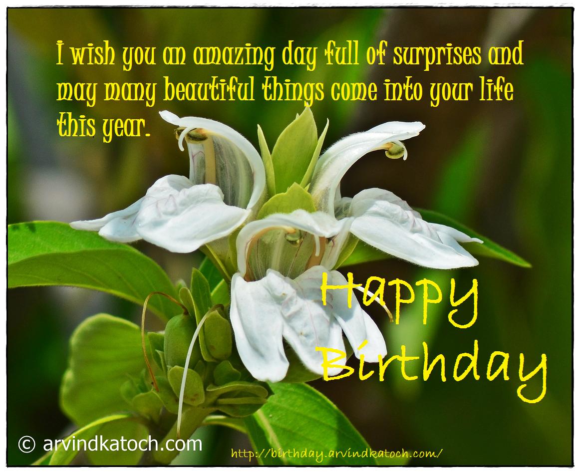 Beautiful, Birthday Card, Happy Birthday, Surprises, amazing, life