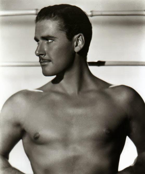 Was errol flynn gay