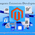 Use Magento Extension Development for creating eStore