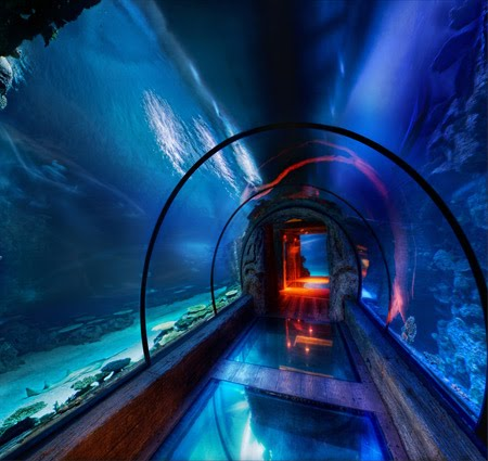 10 Coolest Underwater Places Mdolla