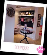 Fashionable POOCH WEAR found in our Poochie Glam Boutique