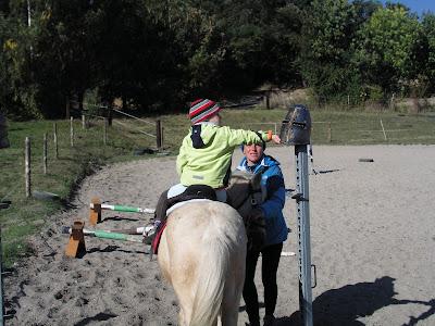 Hubertus 2015, jazda konna, konie, kucyki, konkurs tatarski, pensjonat dla koni w Węgrzcach