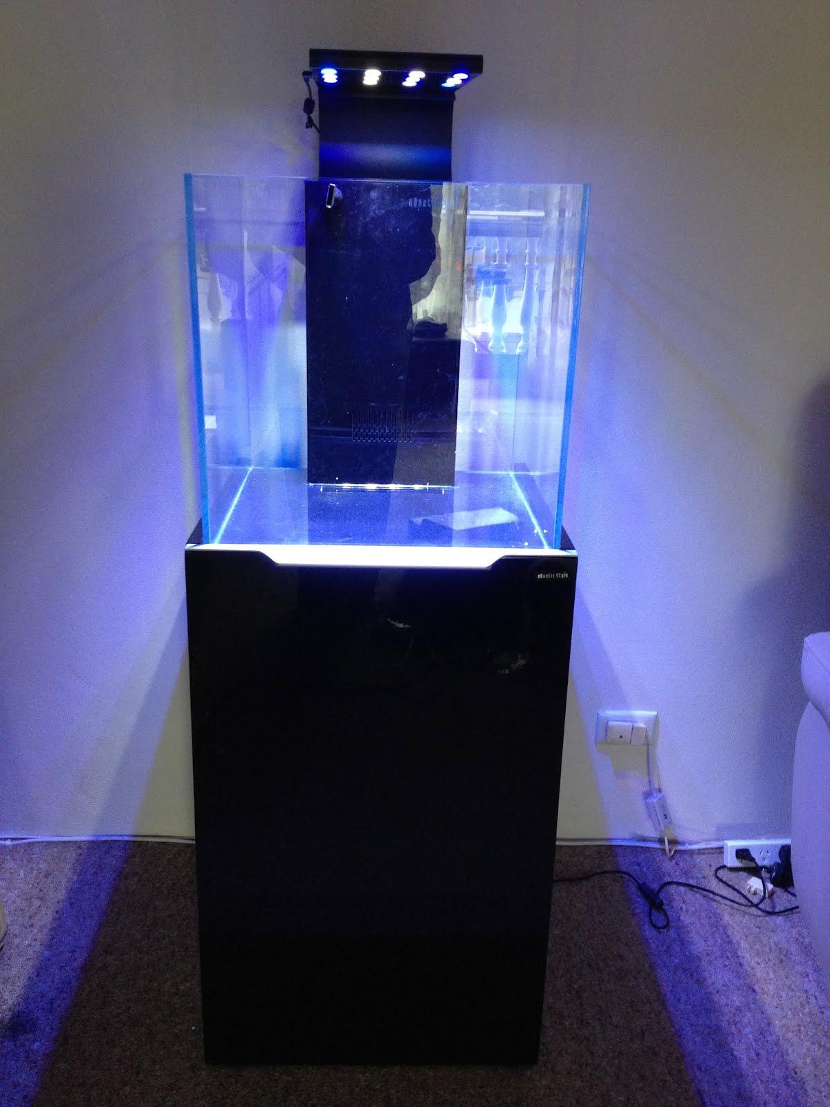 Emboli 39 s aquariums marine tank 40cm cube braceless for Aquarium cube