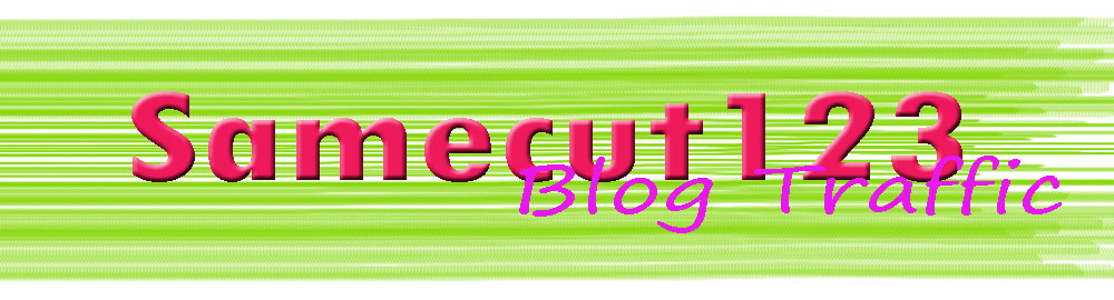 Samecut123 Blog Traffic