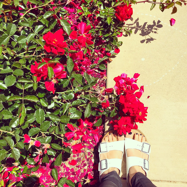 from where i stand, birkenstocks, sandals, flowers, pretty, fashion blog