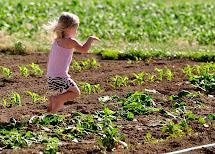 Farm Family' Life Busy Busy