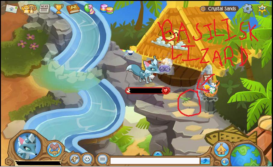 Animal Jam Coral Canyons Journey Book ...