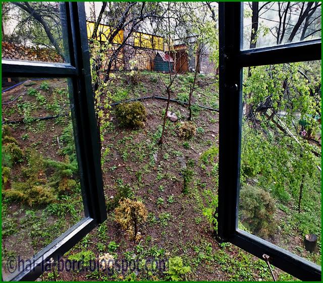 fereastra camera 6 casa lorabella