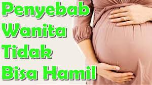 Sulit hamil ? Mungkin inilah faktor penyebab utamanya