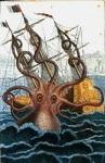 La Biblioteca del Kraken (Sílvia Romero i Olea)