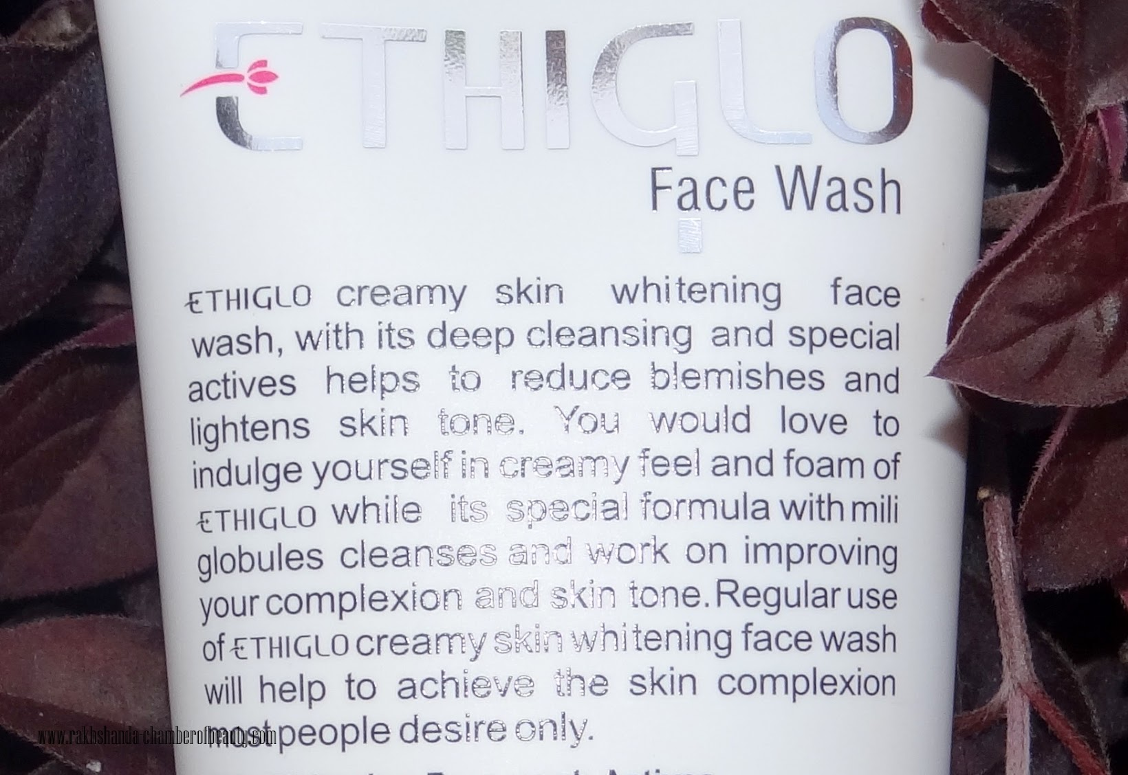 Ethiglo Skin Whitening Deep Cleansing Facial Foam Review & Price in India, skincare in monsoon, products for oily/combination skin in India,Indian beauty blogger, Chamber of beauty