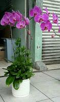Karangan Bunga untuk Ibu Tersayang