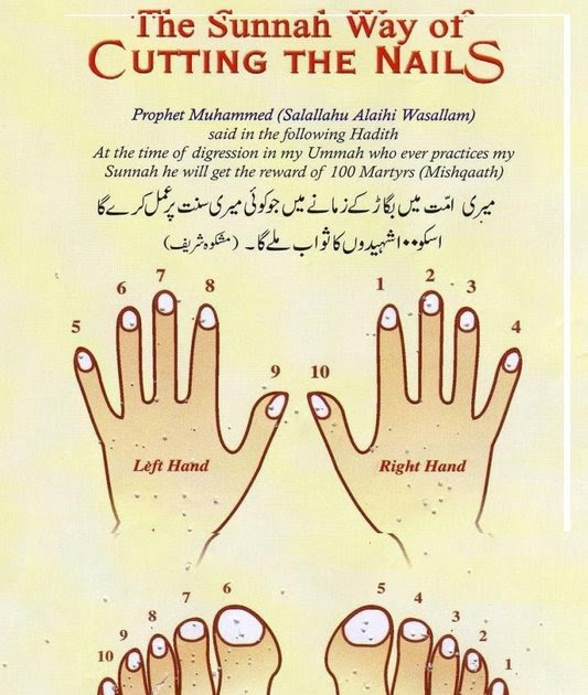 My-Sweet-Islam: Sunnah-Way-of-Cutting-Nails