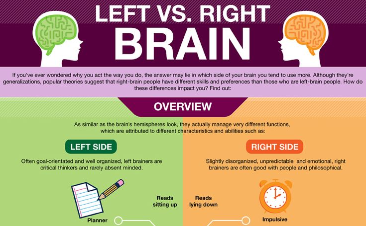 Left Brain Vs. Right Brain - The Eye Opening Insights