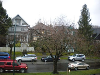 A tree, not yet in obvious bloom, on a rainy Wednesday, picture taken from my window