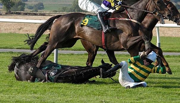 kuda main kepala