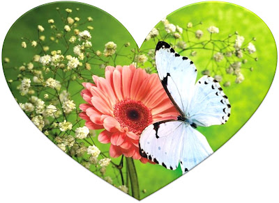 38_corazon_mariposa