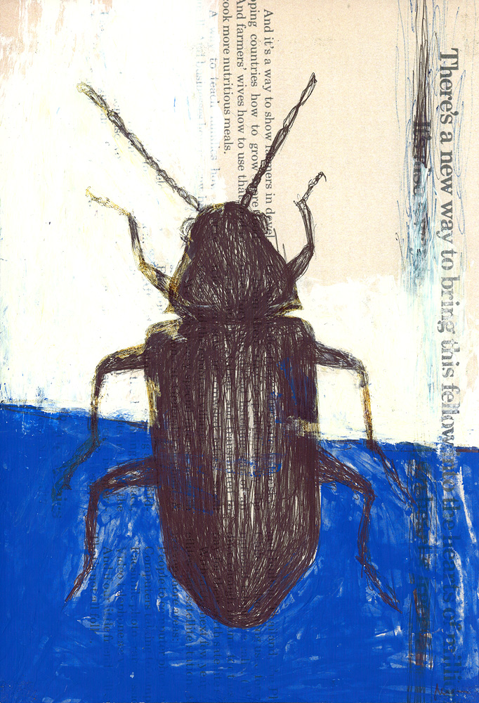 Beetle, 2007. pen and acrylic on found paper.