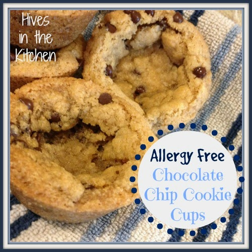 Hives In The Kitchen: {Allergy Free} Chocolate Chip Cookie