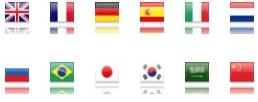 Translate Flag