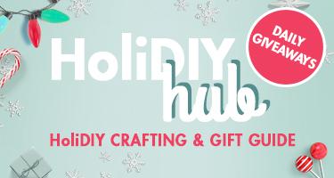Blitsy HoliDIY Hub