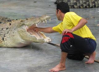 Crocodile Farm in Langkawi