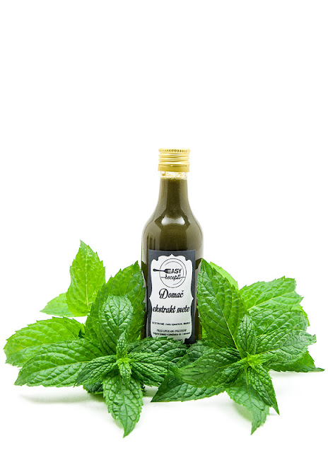 Mint extract mentha spicata with leaves