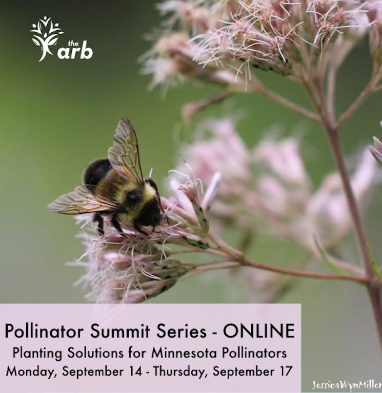 Pollinator Summit Webinar Series