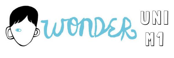 wonderuniM1
