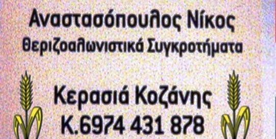 ΘΕΡΙΖΟΑΛΩΝΙΣΤΙΚΑ