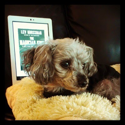 Murchie lounges on his sheep pillow, a wistful look on his face as he cranes his head towards the right side of the screen. Behind him sits a white-edged e-reader with The Magician King's cover on its screen. Murchie's head blocks the cover image but leaves the title and author visible.