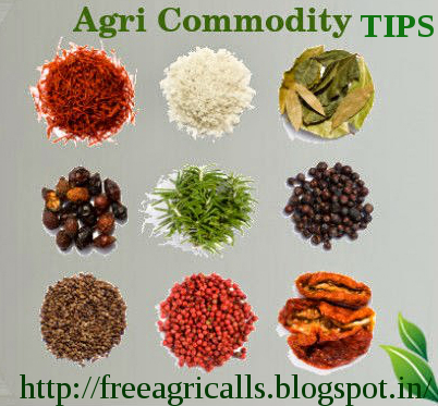 Agri Commodity Tips ,  Commodity free tips  , Commodity intraday tips , Agri commodity calls , free commodity tips