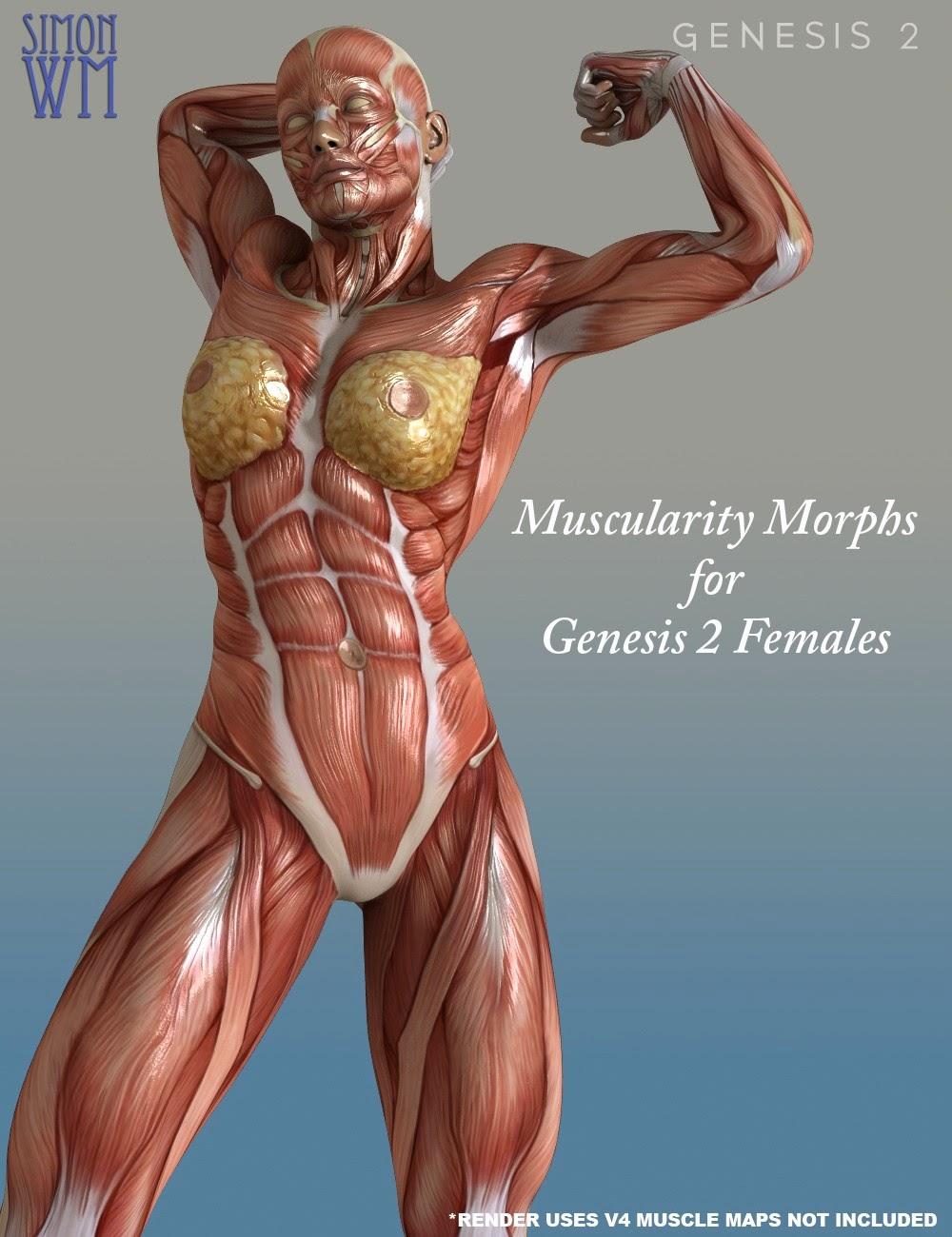 Muscularité Transforme pour Genesis 2 Bundle