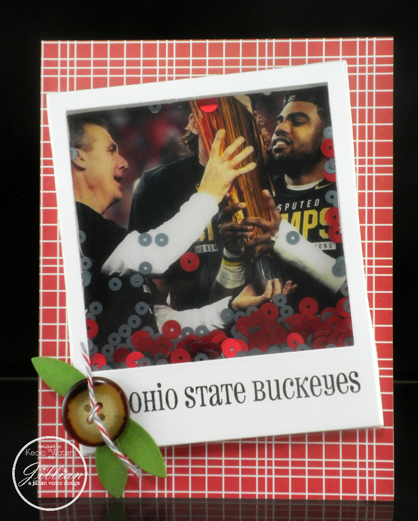 A Jillian Vance Design, Kecia Waters, Ohio State, Shaker Card, Sequins