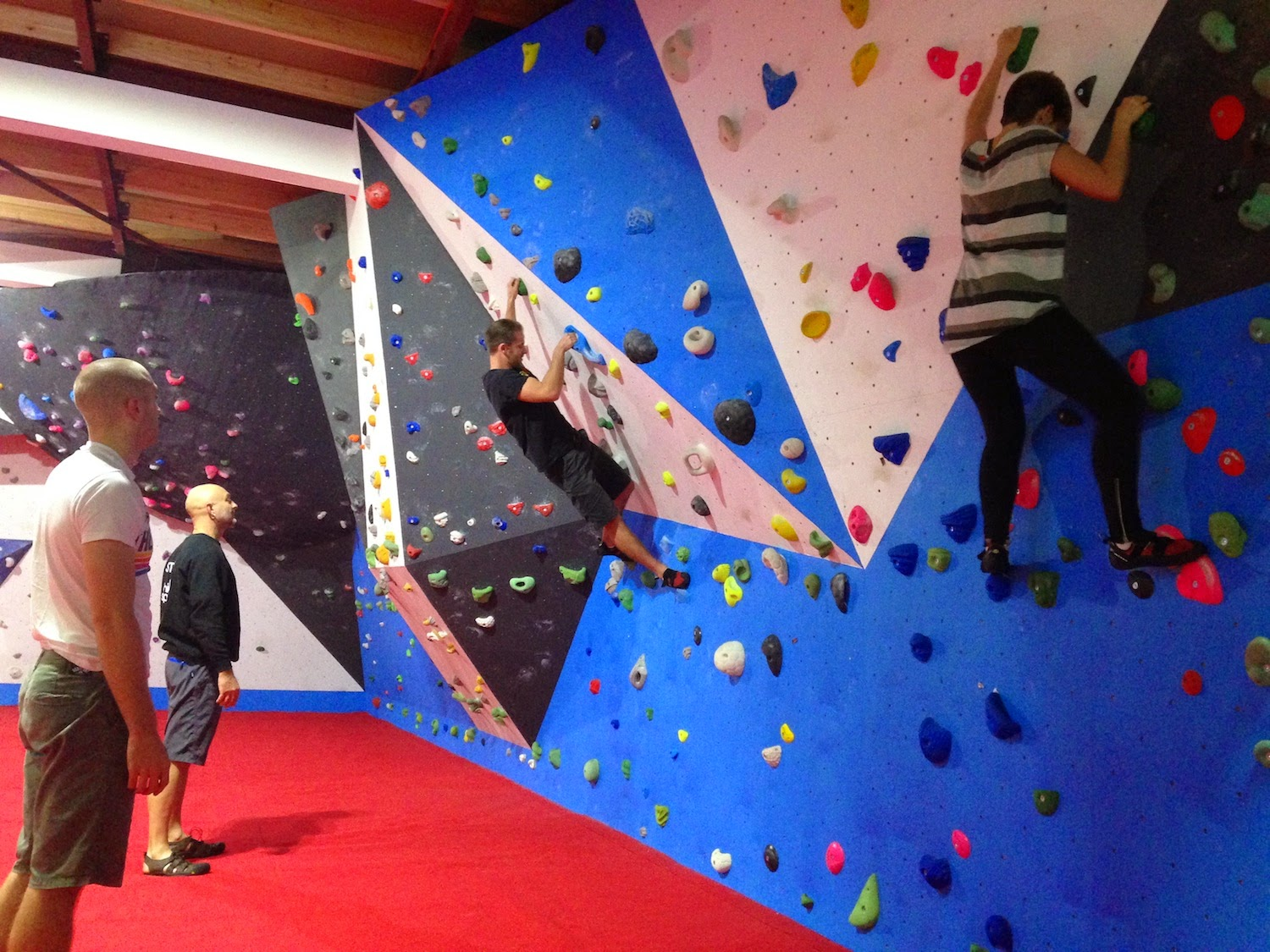 High Sports Climbing Beginner's Course at Withdean Sports Complex, Brighton