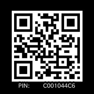 QR Code PIN