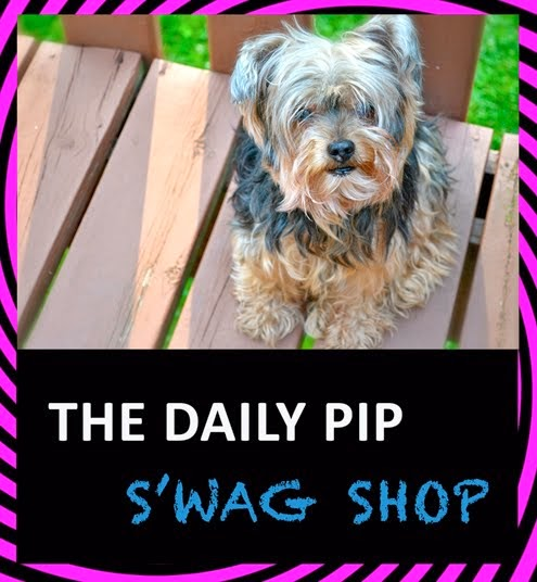 The Daily Pip Swag Shop