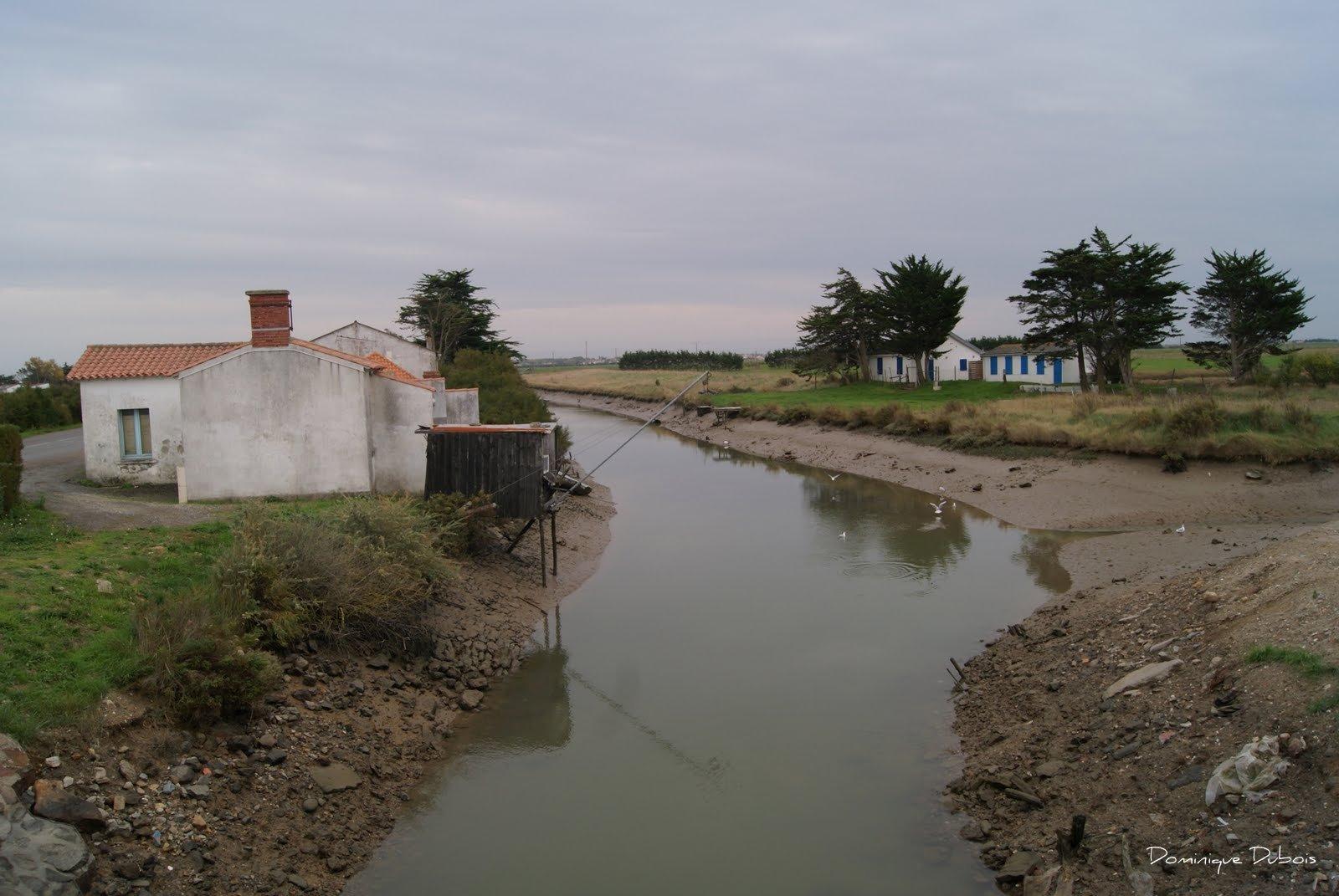 Le port du bec dit port chinois beauvoir sur mer d tours for Piscine beauvoir sur mer