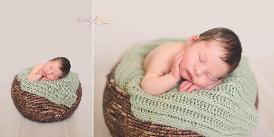 omaha newborn photographer nebraska posed
