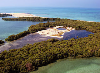 pulau bu tinah /  bu tinah island