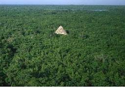 http://3.bp.blogspot.com/-fePkps_hPps/Tr8FLijhtkI/AAAAAAAAATw/cNYIB7CjBkw/s1600/5-PIRAMIDES-AMAZONICAS.jpg