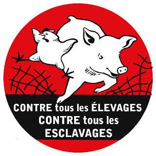 ADESIVO versione francese