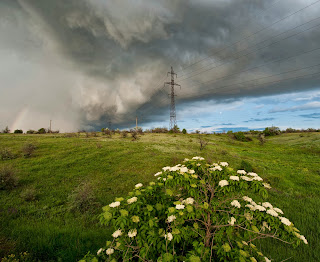 Storm brewing over power line, grassy field