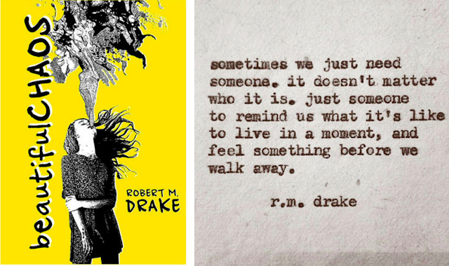Beautiful Chaos by Robert M. Drake