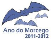Ano do Morcego