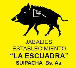 Establecimiento de cría de jabalíes y restaurante La Escuadra, en Suipacha, Bs. As.