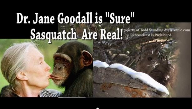 Jane Goodall Bigfoot is real