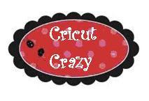 Cricut Crazy frame