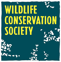 Be interested in wildlife conservation
